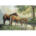 Лошади у источника 35174 Набор для вышивания Dimensions