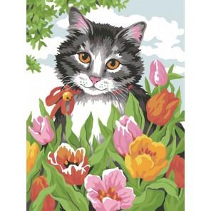 Кошечка в тюльпанах Раскраска картина по номерам акриловыми красками на холсте Color Kit