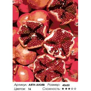 Количество цветов и сложность Спелые гранаты Раскраска по номерам на холсте Живопись по номерам ARTH-AH348