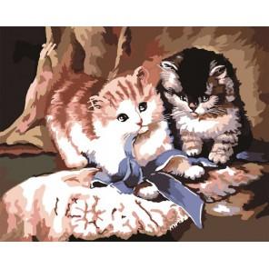 Игра котят Раскраска по номерам на холсте Color Kit