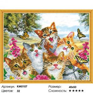 Количество цветов и сложность Веселая компания Алмазная мозаика вышивка на подрамнике Molly KM0107