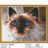 Количество цветов и сложность Дымчатый кот Алмазная мозаика вышивка на подрамнике Molly KM0122