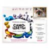 Коробка Дымчатый кот Алмазная мозаика вышивка на подрамнике Molly KM0122
