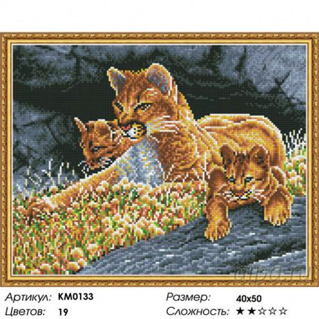 Количество цветов и сложность Урок наблюдательности Алмазная мозаика вышивка на подрамнике Molly KM0133