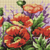 Восхитительные маки Алмазная мозаика вышивка на подрамнике Painting Diamond BF610
