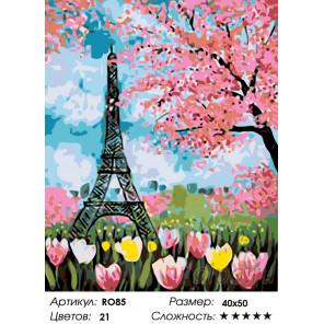Количество цветов и сложность Весенние цветы Парижа Раскраска по номерам на холсте Живопись по номерам RO85