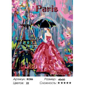 Количество цветов и сложность Парижанка Раскраска по номерам на холсте Живопись по номерам RO86