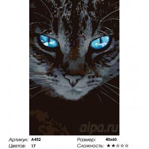 Чарующий взгляд Раскраска по номерам на холсте Живопись по номерам A452