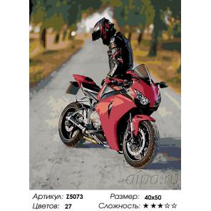 Количество цветов и сложность Романтика дорого Раскраска по номерам на холсте Живопись по номерам Z5073