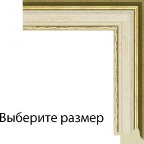 Выберите размер Глэмис Рамка для картины на картоне N184