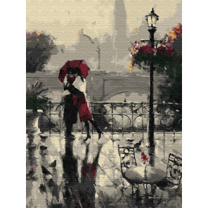 Дождливое свидание Раскраска по номерам на холсте Z-EX5798
