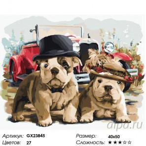 Количество цветов и сложность Джентльмены Раскраска картина по номерам на холсте GX23845