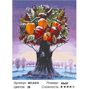 Количество цветов и сложность Фантастическое дерево с фруктами Раскраска картина по номерам на холсте МСА210