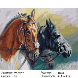 Количество цветов и сложность Грациозные лошади Раскраска картина по номерам на холсте МСА295