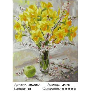 Букет нарциссов Раскраска картина по номерам на холсте МСА277