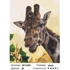 Количество цветов и сложность Жираф Раскраска картина по номерам на холсте МСА284