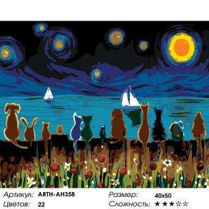 Любуясь звездным небом Раскраска картина по номерам на холсте ARTH-AH358