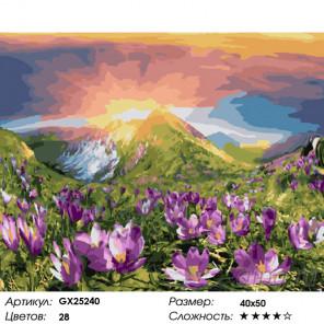 Количество цветов и сложность Весна в горах Раскраска картина по номерам на холсте GX25240