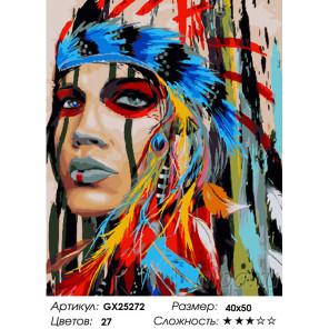 Количество цветов и сложность Индейская принцесса Раскраска картина по номерам на холсте GX25272