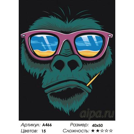 горилла в очках раскраска картина по номерам на холсте A466