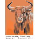 Количество цветов и сложность Взгляд быка Раскраска картина по номерам на холсте Z101100287