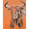 Взгляд быка Раскраска картина по номерам на холсте Z101100287