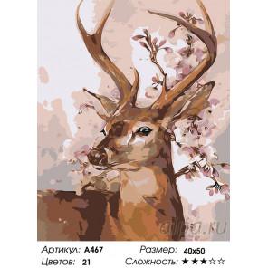 Олень весной Раскраска картина по номерам на холсте A467