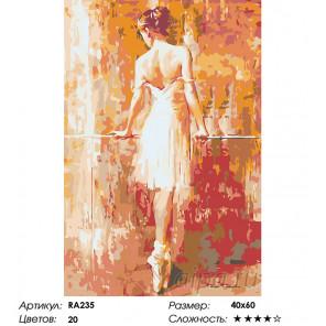 Количество цветов и сложность Тонкий стан балерины Раскраска картина по номерам на холсте RA235