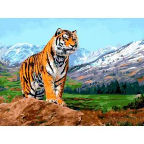Тигр на фоне гор Раскраска картина по номерам на холсте