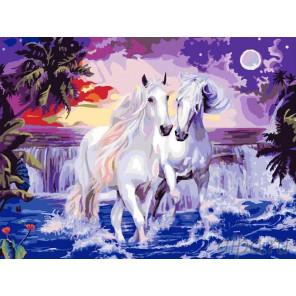 Кони Раскраска картина по номерам на холсте