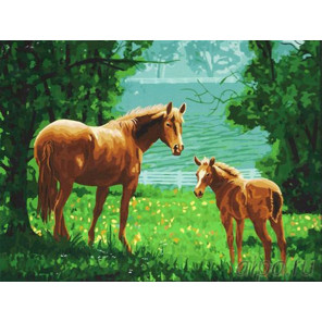 Жеребенок с мамой Раскраска картина по номерам на холсте
