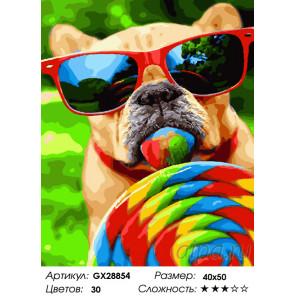 Количество цветов и сложность Вкуснятина Раскраска картина по номерам на холсте GX28854