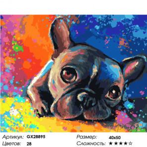 Количество цветов и сложность Мечты бульдога Раскраска картина по номерам на холсте GX28895