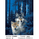 Количество цветов и сложность Ночной дозор Раскраска картина по номерам на холсте GX28852