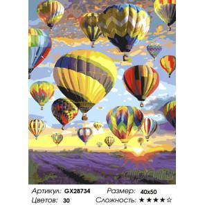 Количество цветов и сложность Полёт над лавандовым полем Раскраска картина по номерам на холсте GX28734