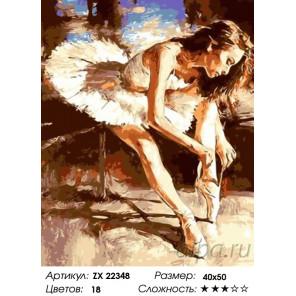 Количество цветов и сложность Подготовка к балету Раскраска картина по номерам на холсте ZX 22348