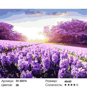 Количество цветов и сложность Поле сирени Раскраска картина по номерам на холсте ZX 22216