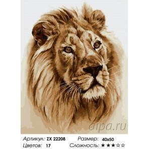 Количество цветов и сложность Умный лев Раскраска картина по номерам на холсте ZX 22208