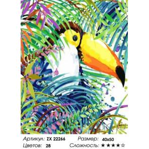 Количество цветов и сложность Тукан Раскраска картина по номерам на холсте ZX 22266