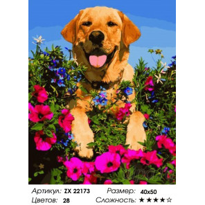 Количество цветов и сложность Собачка в цветах Раскраска картина по номерам на холсте ZX 22173
