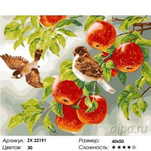 Количество цветов и сложность Воробьи на яблоне Раскраска картина по номерам на холсте ZX 22191