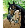 Лошади во дворе Раскраска картина по номерам на холсте ZX 21570