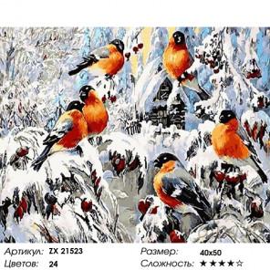 Количество цветов и сложность Красногрудые снегири Раскраска картина по номерам на холсте ZX 21523