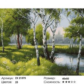 Количество цветов и сложность Лесные березки Раскраска картина по номерам на холсте ZX 21575