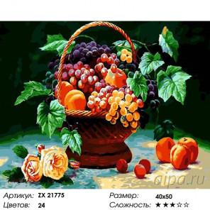 Количество цветов и сложность Натюрморт с виноградом и фруктами Раскраска картина по номерам на холсте ZX 21775