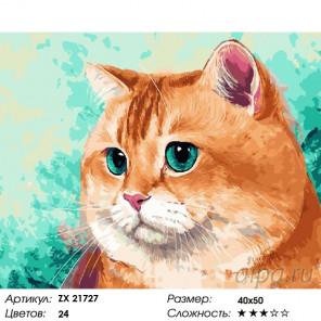 Количество цветов и сложность Рыжий домашний кот Раскраска картина по номерам на холсте ZX 21727