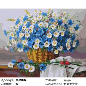 Количество цветов и сложность Ромашки и васильки Раскраска картина по номерам на холсте ZX 21832