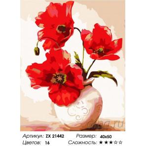 Три красных мака Раскраска картина по номерам на холсте ZX 21442