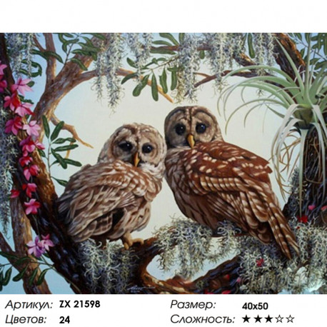 ZX 21598 Совиный лес Раскраска картина по номерам на ...