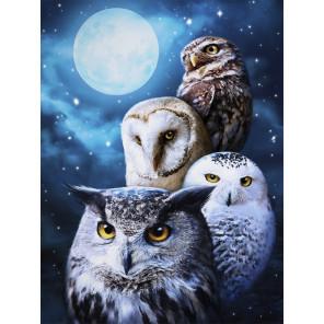 Ночные совы Алмазная вышивка мозаика АЖ-1738